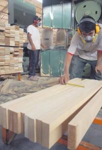 Proyecto Puente: Empleo de calidad y responsabilidad social en la cadena productiva de la madera